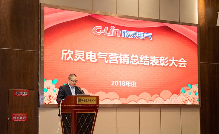 欣灵电气营销总结表彰大会